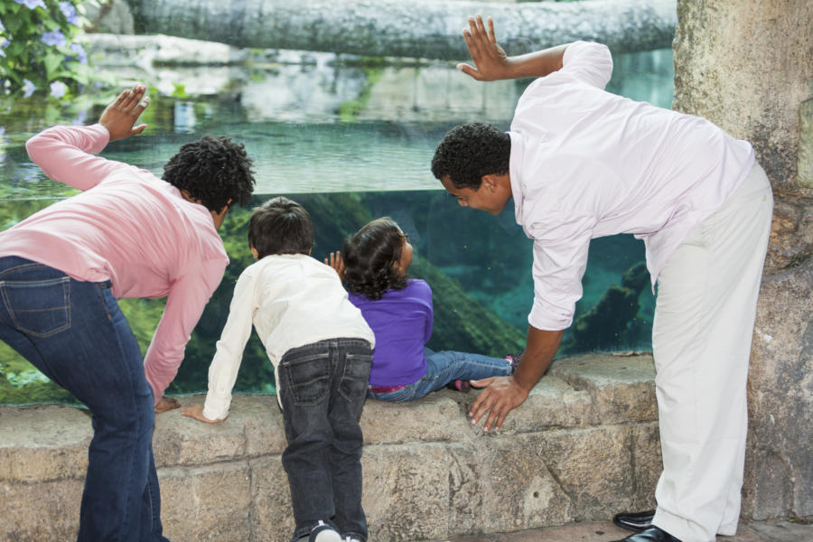 "A gift of a trip to the aquarium or another experience will be remembered long after ""things"" are forgotten."
